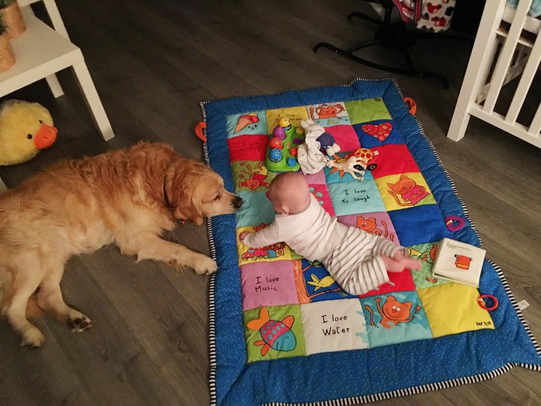 baby en een huisdier